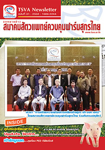 tsva-newsletter-cover-no-31